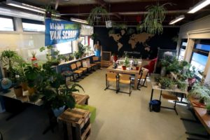 Green Office 1
